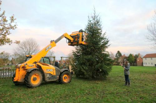 Christmas Tree Raising